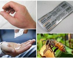 O que fazer se um pedaço de abelha