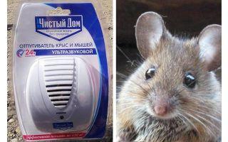 Repelente ultrassônico de ratos e camundongos Casa limpa