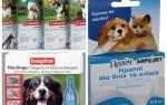 Remédios contra pulgas e carrapatos para cães