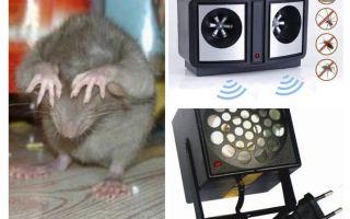 Repelentes ultrassônicos de roedores