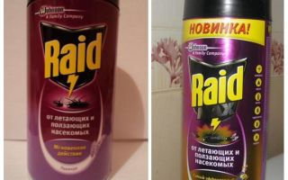 Remédio de Raid Bed