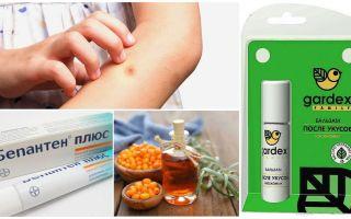 Loja e remédios populares para picadas de mosquitos e moscas negras