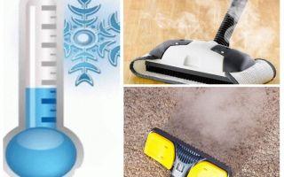 Como se livrar de insecticidas de pulgas de tapetes e meios improvisados