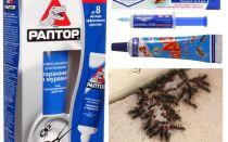 Os melhores produtos de formiga