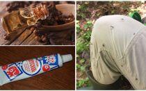 Remédios populares para mosquitos