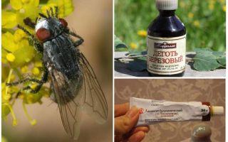Remédio para moscas e mutucas para humanos