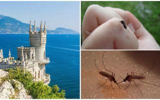 Existem mosquitos na Crimeia