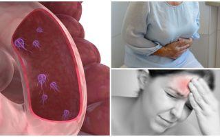 Como determinar a presença de Giardia no corpo humano