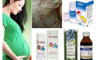 Como tratar a pediculose durante a gravidez e amamentação