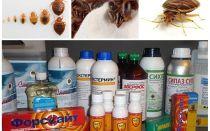Revisão dos remédios mais eficazes para os erros domésticos