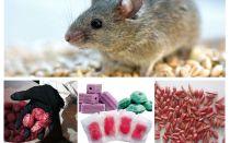 Veneno para ratos e camundongos
