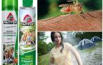 Protegendo o território dos mosquitos Raptor