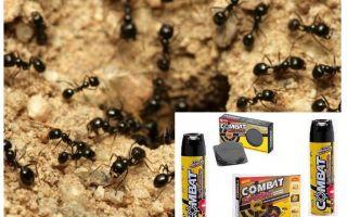 Remédios Ant Combate