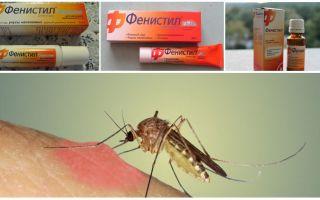 Gel Fenistil de picadas de mosquito: instruções, análises e análogos
