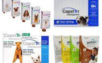 Comprimidos para pulgas e carraças para cães