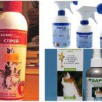Sprays de pulgas em gatos