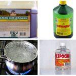 Remédios para o besouro casca