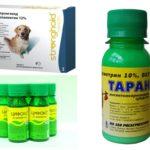 Remédios Flea 1