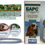 Suprimentos para cães
