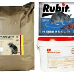 Preparações venenosas para ratos