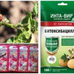 Produtos químicos para a destruição do besouro da batata do Colorado