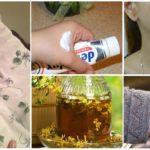 Receitas populares de picadas de insetos