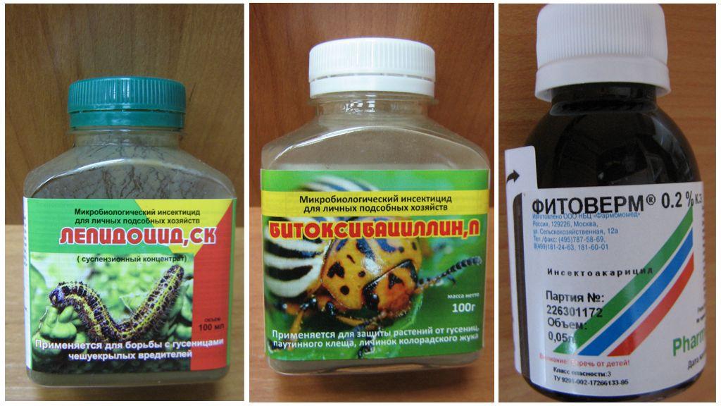 Agentes biológicos contra lagartas