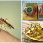 Métodos de lidar com mosquitos