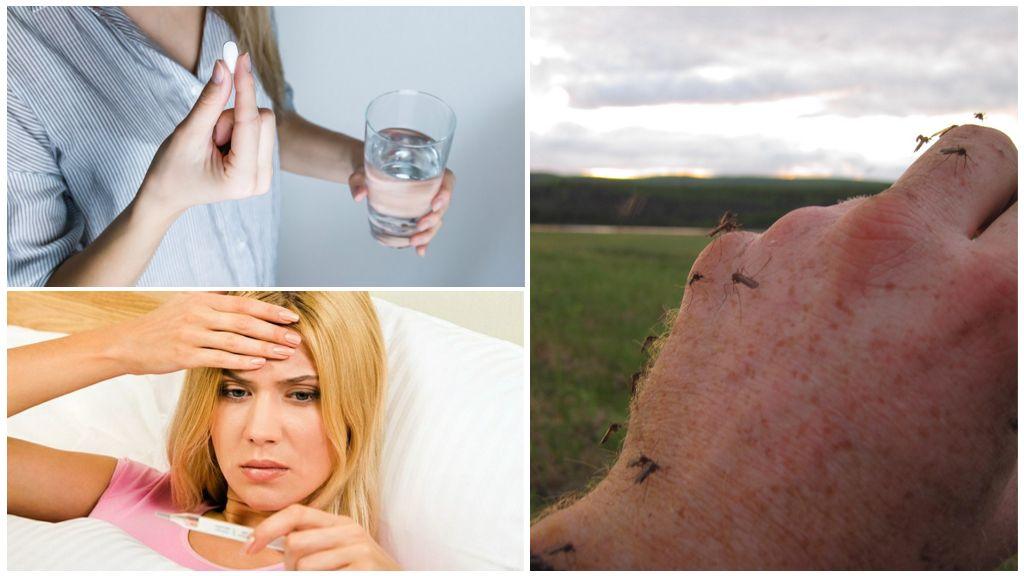Medicina em uma temperatura de picadas de mosquito