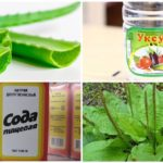 Medicina tradicional para o tratamento de picadas de mosquito