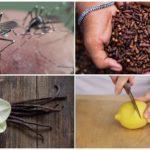 Métodos repelentes de insetos