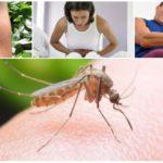 Consequências da picada de mosquito da malária